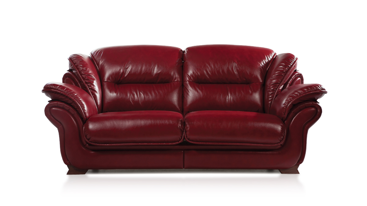 Прямой диван Герольд, фото 2